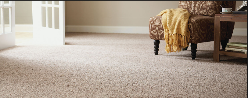 Carpet And Flooring Specialists; Gold Coast