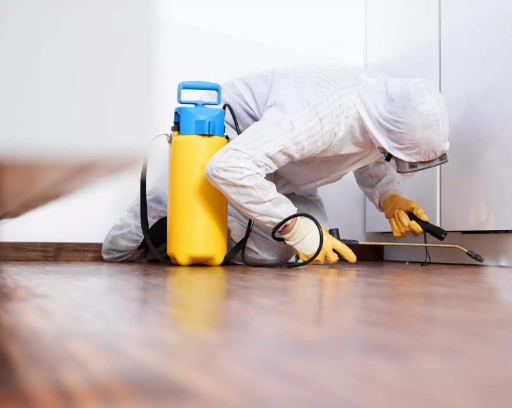 Secure Your Home From Pests With The Help Of The Safe Pest Control Sydney