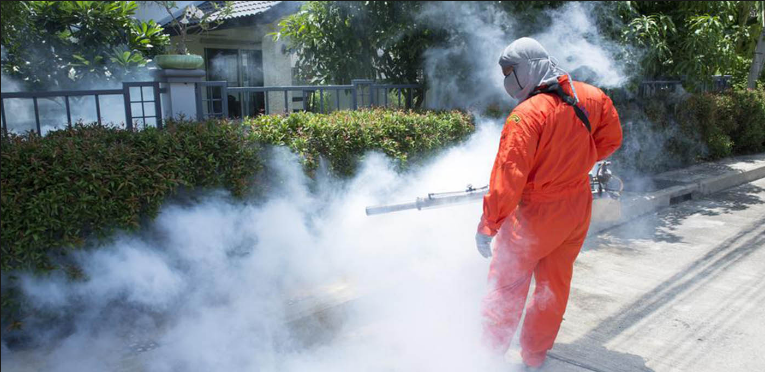 Why Pest Control Service In Brisbane is Necessary
