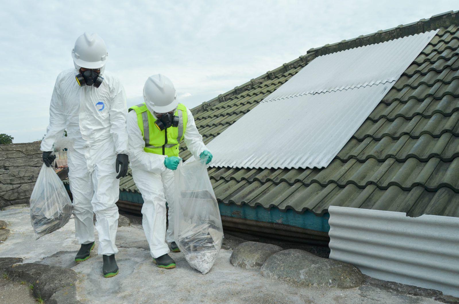 asbestos Auckland
