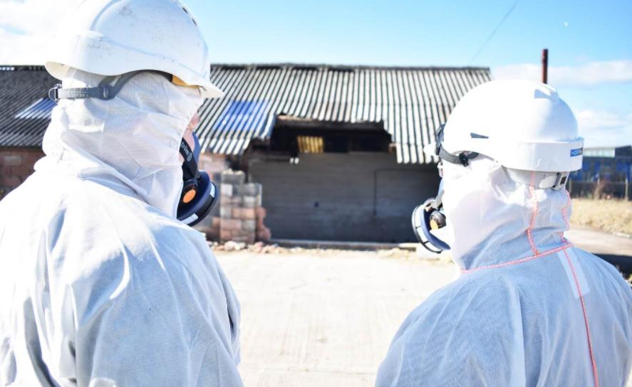 asbestos inspection report
