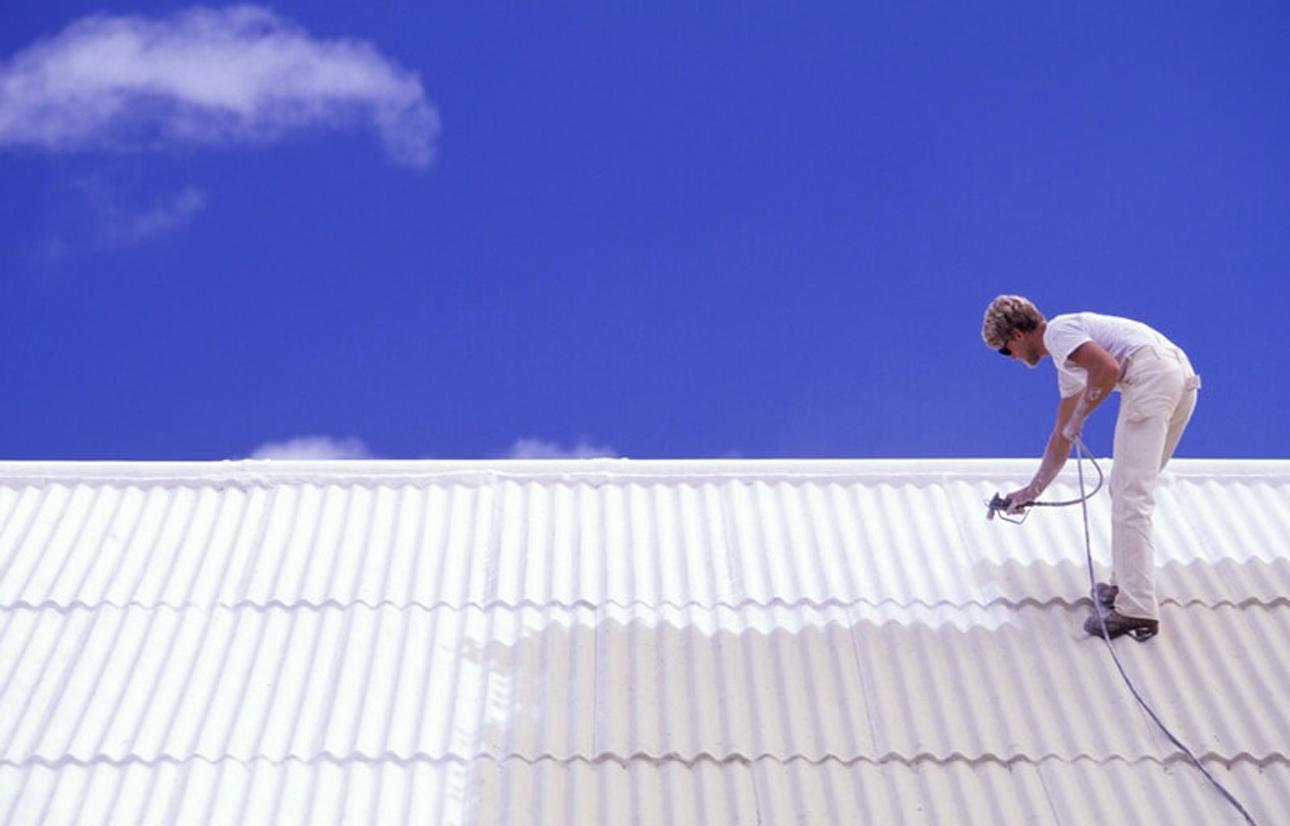 metal roof painters
